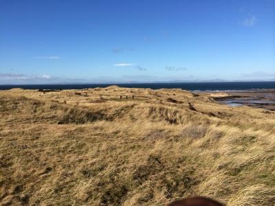 Dunes et rough sur le parcours de Renaissance