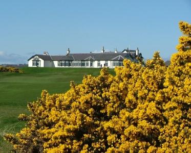 Clubhouse et ajoncs  sur le parcours du Royal Aberdeen.