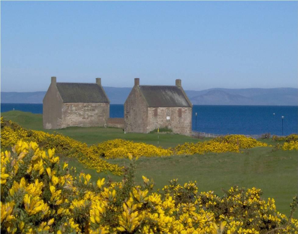 Maisons, ajoncs et mer sur le parcours de Prestwick St Nicholas